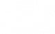Fender Squier x