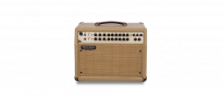 Rosette 300 Two Eight Acoustic Combo