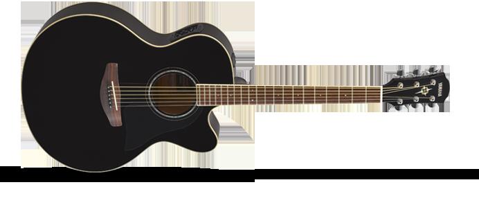 CPX 600 Black Westerngitarre