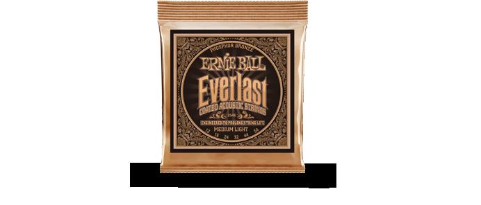 Everlast Phosphor Bronze 2546