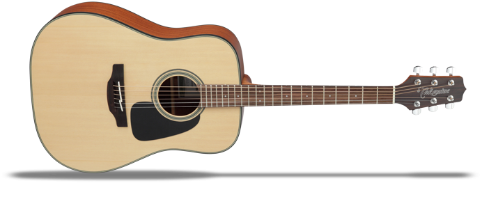 GD10NS 2 Natural Satin  G-Series 10 Westerngitarre