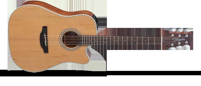 GD20CENS 2 Natural Satin  G-Series 20 Westerngitarre