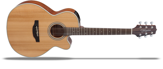 GN20CENS 2 Natural Satin  G-Series 20 Westerngitarre