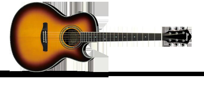JSA20  Vintage Burst Joe Satriani Signature