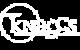 Knaggs Guitarsx