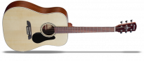 Regent 26 RD26 Dreadnought Natural Gloss Finish