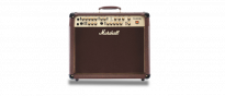 AS100D  Acoustic Soloist Stereo Combo