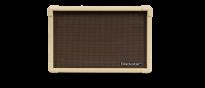 Acoustic Core 30 Akustik Verstärker