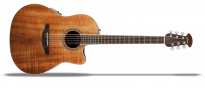 Celebrity Standard CS24P Exotic Mid Depth Koa