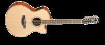 CPX700II-12 Natural 12 Saiter Westerngitarre