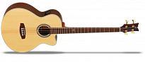 D538 Akustik Bass 4 Saiter