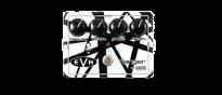 EVH-117 Flanger
