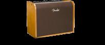 Acoustic 100 Akustikgitarren Verstärker