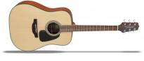 GD10NS 2 Natural Satin  G-Series 10 Westerngitarre