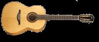 Acoustic Green Line HA CS7 Die Klassische