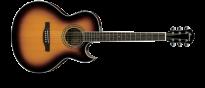 JSA5  Vintage Burst Joe Satriani Signature