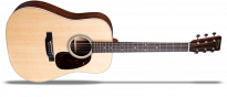 D-16E Rosewood Dreadnought