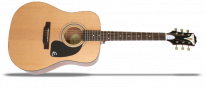 Pro 1 Acoustic Natural