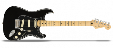 Limited Edition Player Stratocaster MN Double Black